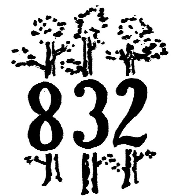 Suite de Nombres en photos - Page 35 Troop%20832%20Logo